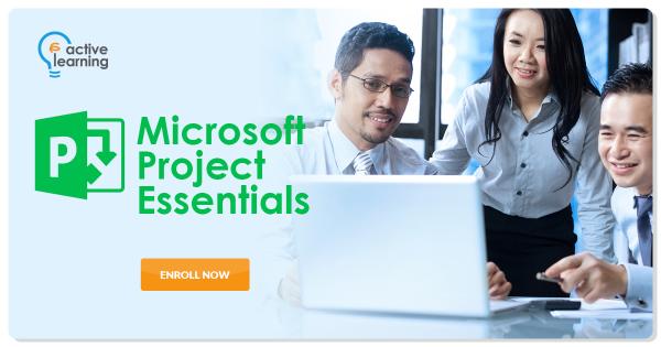 Microsoft Project Essentials