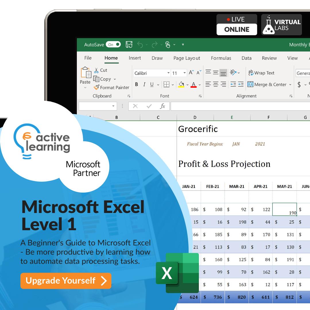 Microsoft Excel Level 1